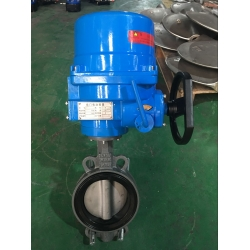 Marine electric butterfly valve with manual device