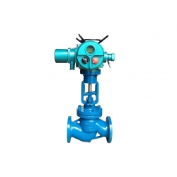 Marine electric stop check valve